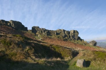 Cow and Calf in Ilkley, West Yorkshire