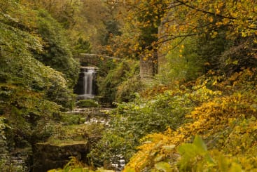 A waterfall and bridge in jesmond dene in autumn