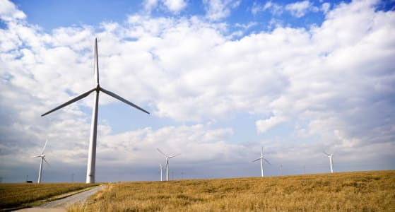 Yorkshire Energy: renewable and sustainable